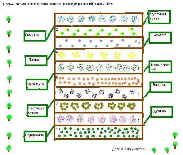 Как правильно сажать огород схемы 68