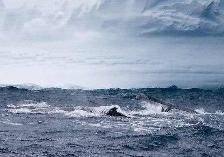 Южный океан 2 1254