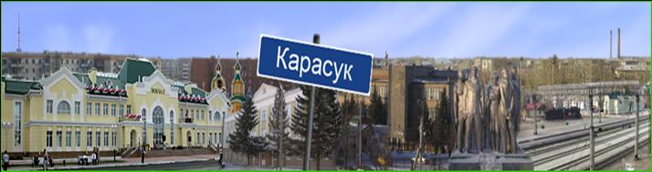 проститутки карасук новосибирская область