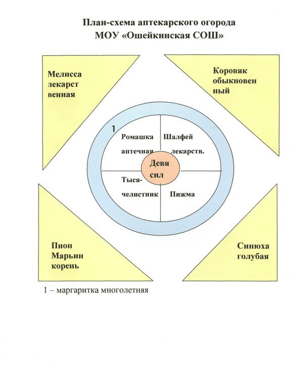План-схема аптекарского